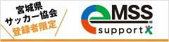 eMSSサポート